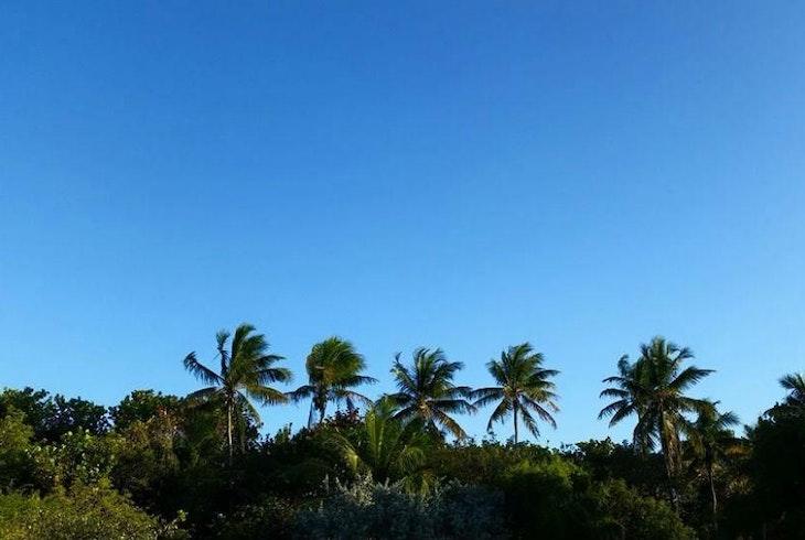 Key West Tour Company