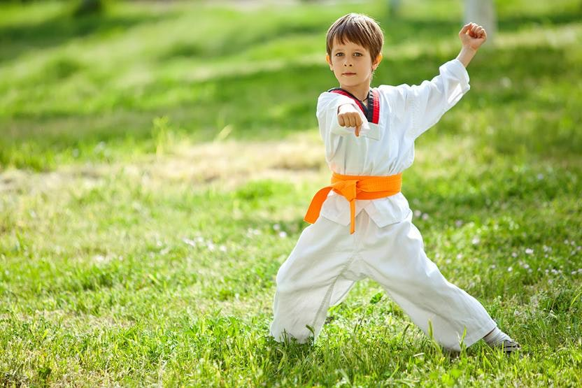 children in mixed martial arts Budo full range martial arts in voorhees, nj is the number one source for world  class mixed martial arts, birthday parties, and kids martial arts.
