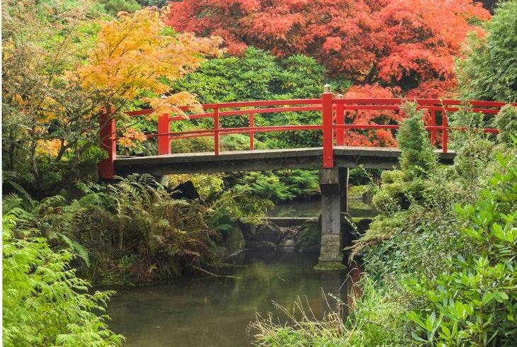 kubota garden kubota garden kubota garden - Kubota Garden