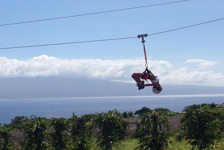Maui Dragon Fruit Aquaball And Zipline Combo Adventure Tour
