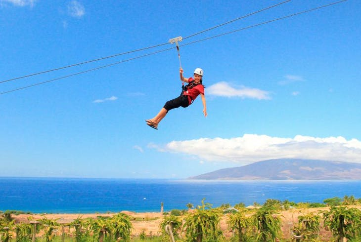 Maui Dragon Fruit Farm Zipline Adventure Tour