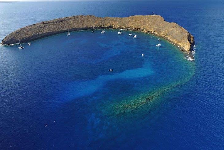 Maui Reef Adventures Snorkel Tour