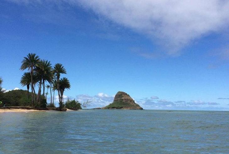 Oahu Nature Tous