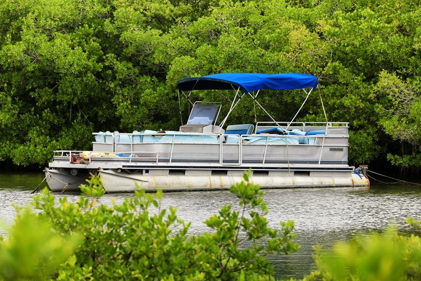 pontoon boat pontoon boat     lake jesup pontoon boat eco tour   black hammock adventures      rh   vimbly