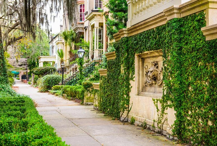 Savannah Architecture