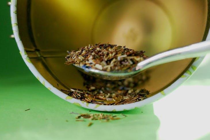 Tea Tasting