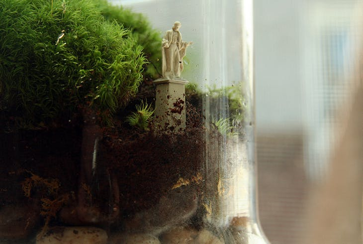 Twig Terrariums