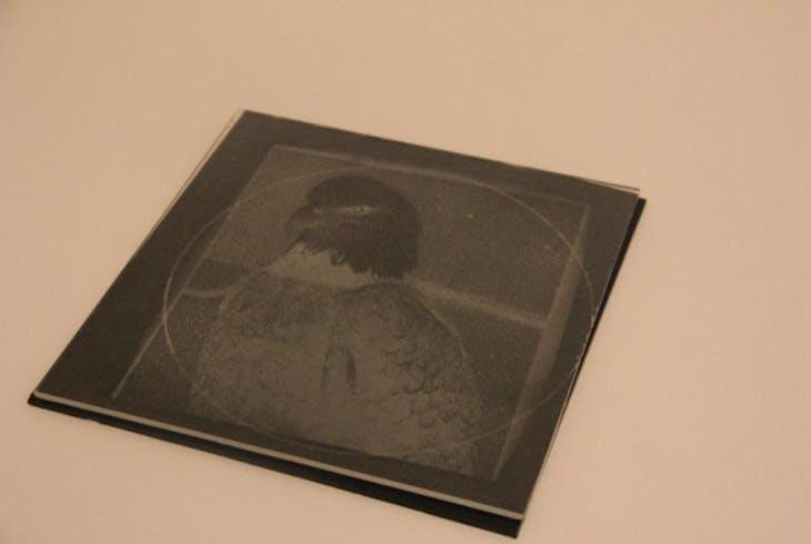 V Images In Glass 3758