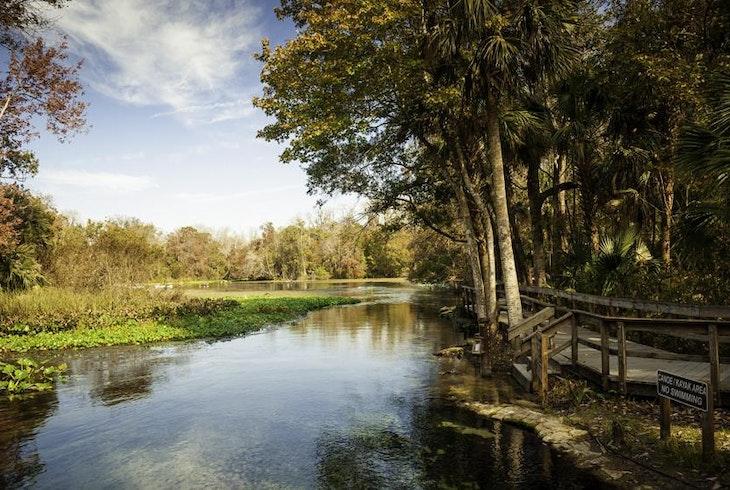 Wekiva River Florida