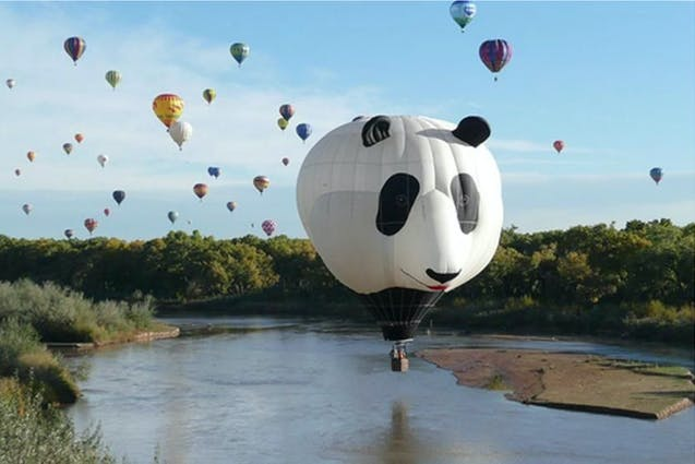 panda-hot-air-balloon-ride-san-diego-date-ideas-vimbly