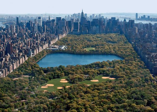 The Best Classes to Take in Central Park
