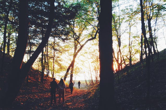 Never Have I Ever...Fall Outdoor Activities Every New Yorker Needs to Try