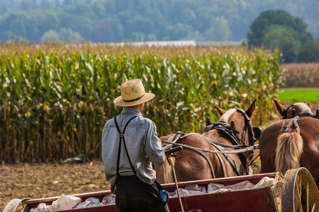 philadelphia-date-amish-tour