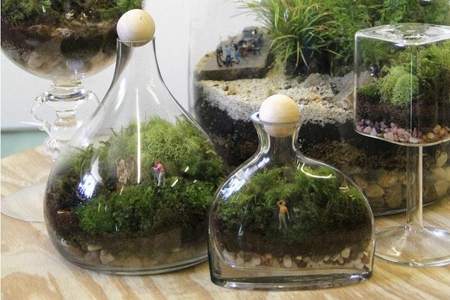 nyc-terrarium-vimbly