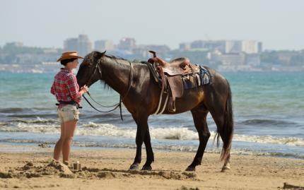 Horseback Riding & Wine Tasting
