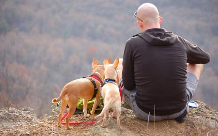 Hike & Hound