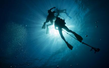 Discover Scuba: Weekend Executive Class (Disabled previously NJP 3/23/2020)