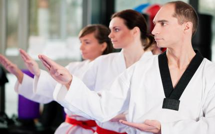 Tae Kwon Do - All Levels (Previously disabled NJP 9/4/19)