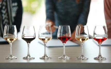 French Wines: Making Sense of it All