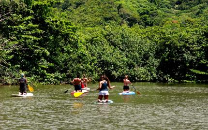 Active Oahu Tours Rainforest River Paddleboarding Tour