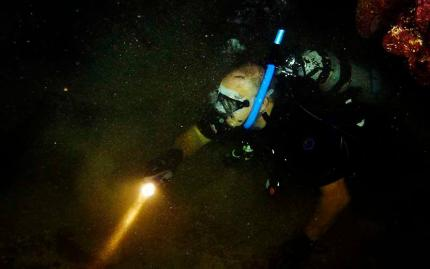 Hilo Ocean Adventures Certified Beach Night Dive