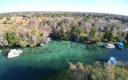 River Ventures Manatee Tour Center Kayaks