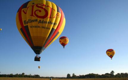 Vista Balloons