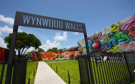 Wynwood Art Walk Guided Gallery Tour