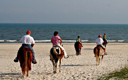 Beach Horseback Riding & Wine Tasting