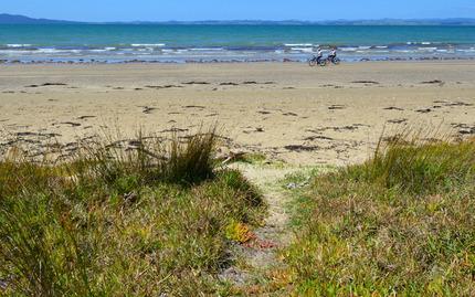 Beach Vineyard Bike Tour