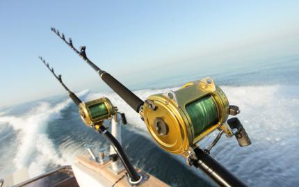 Deep Sea Fishing Warm Weather