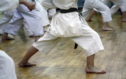 Mixed Martial Arts - Trial Class