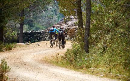 Mountain Bike Mountain