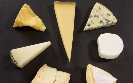 Cheese 101 (vendor cancelled previously FMC 1/22/18)