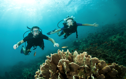 Discover Scuba: Weekend Executive Class -- disabled. vendor asked to be delisted (CS 3/23/16)