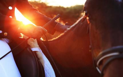 Sunset Horseback