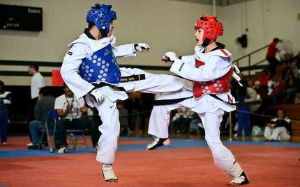Tae Kwon Do Sparring - All Levels Trial Class (vendor cancelled previously FMC 1/22/18)